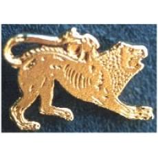 Spilla da giacca color oro